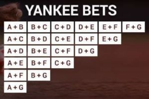 Yankee in betting terms seahawks cardinals betting line